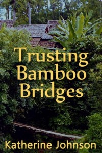 Trusting-Bamboo-Bridges Website 2